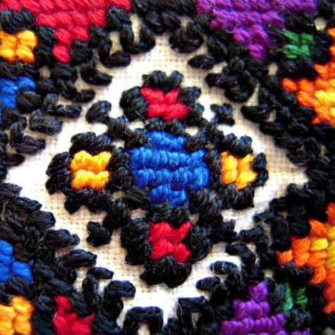Collar close-up